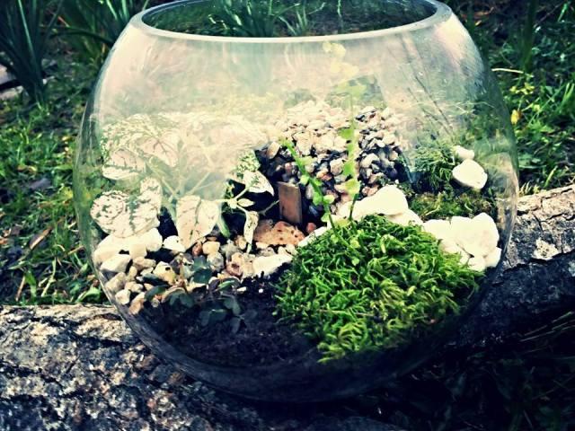 Vlad Gîrboan creates terrariums that bring nature to your desk