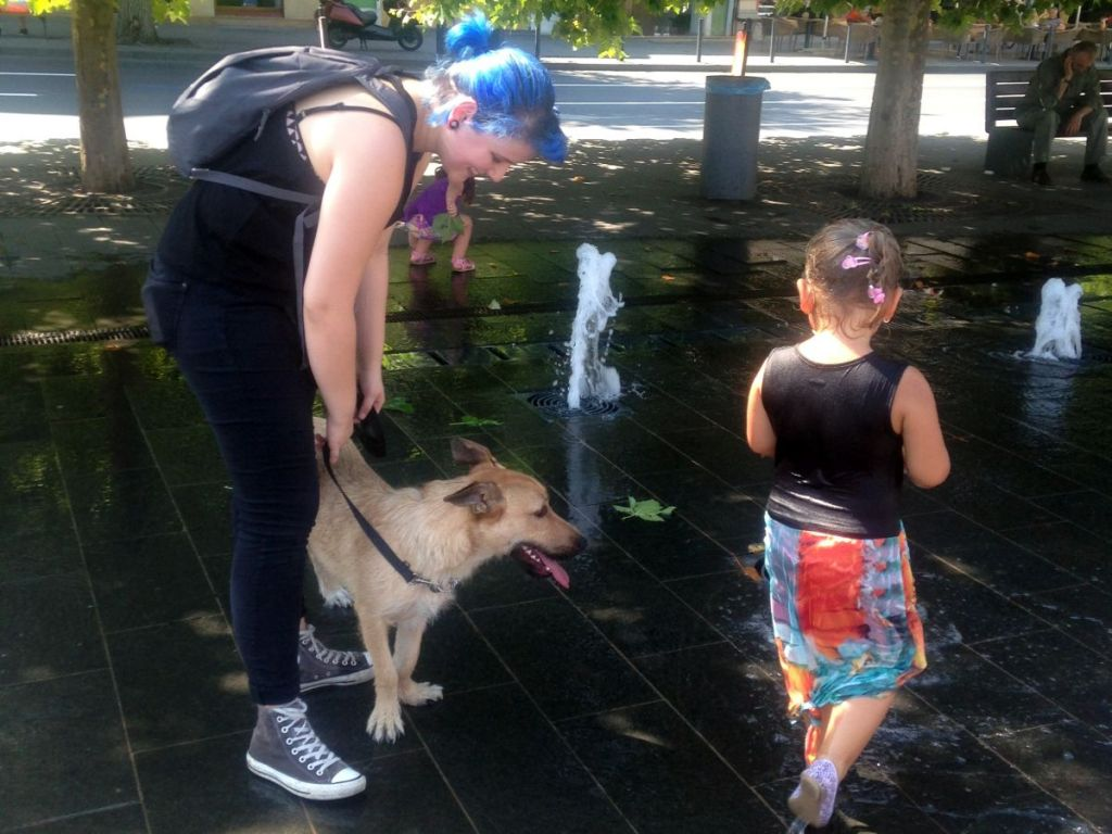 Noemi Biro: Dogs Taught Me How to Keep Cool