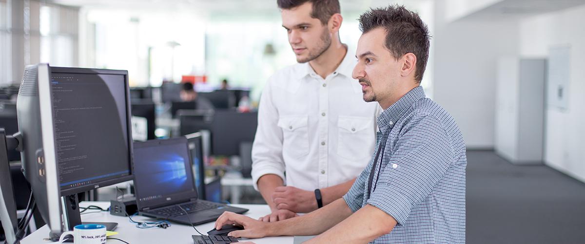 .NET Software Engineer