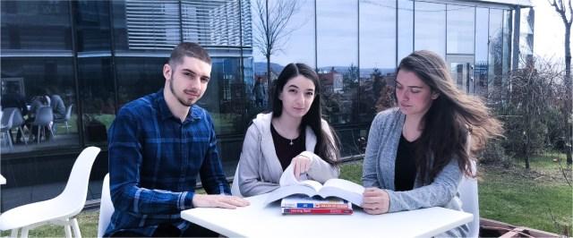 "Intern stories: How Bogdan, Dalma and Diana ""slayed dragons"" during their programming internship"